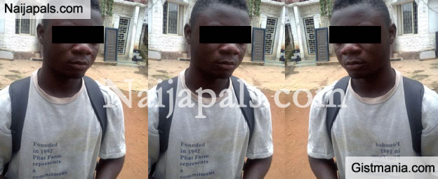 TABOO: 19-yr-old Rapes Chicken To Death In Ondo