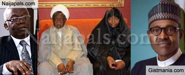 Provide Adequate Medical Treatment For El-Zakzaky, Wife Without Further Delay - Falana To Buhari