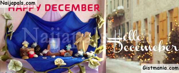 December Is Here, Christmas Season Is Here!! Happy New Month To Everyone!! (Snail's Tragic Story)