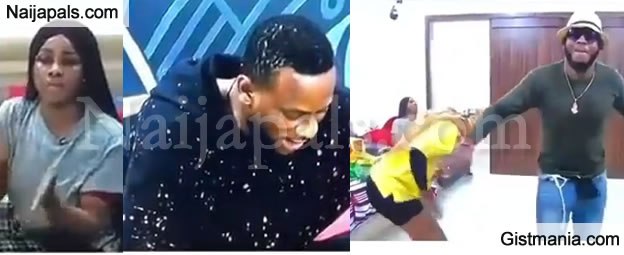 #BBNaija: Frodd And Mercy Dancing Happily During A Fight Between Tacha And Omoshola (WATCH)