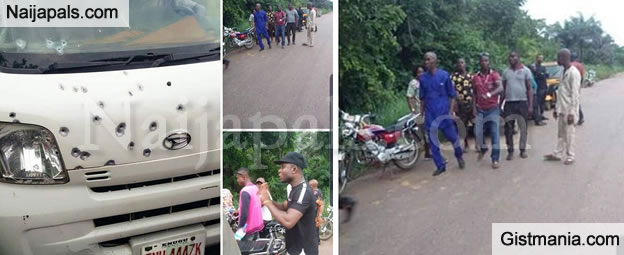 Fulani Herdsmen Attack Commercial Bus In Enugu, Cart Away Valuables And Adopts 3 Young Girls