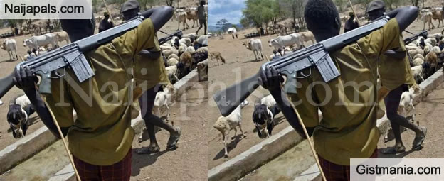 Kidnappers Or Cattle Rustlers Caught Will Be Put To Death In Katsina