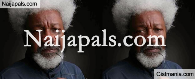 You're a Moron If You Believe I Insulted Igbos - Professor Wole Soyinka