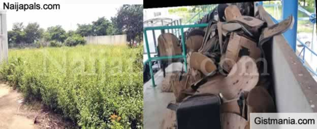 See The Present Situation Of $360m Abiola Stadium Taken Over By Weeds