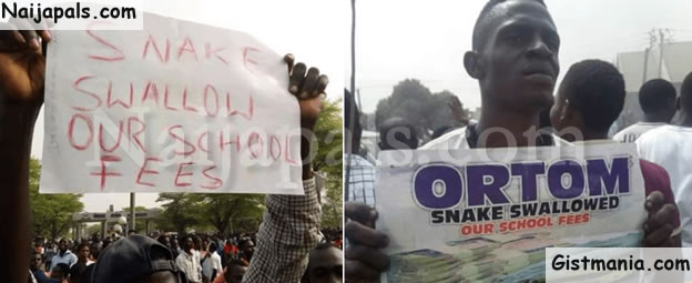 HILARIOUS! Benue State University Shut Down After Money Swallowing Snake Eat Student's School Fees