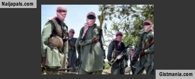Video: BBC Meets Gang 'Paid to Join Boko Haram' in Niger Republic