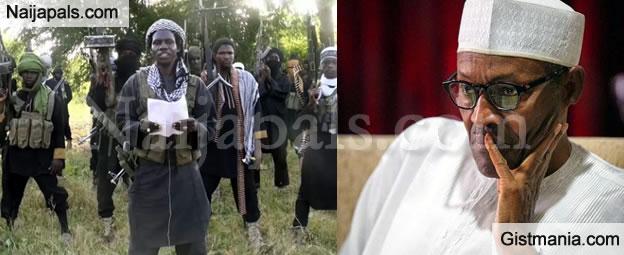 Buhari Is Lying, Boko Haram Is Still Controlling 50% Of Borno State - Senator Garbai