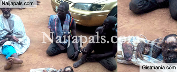 Politicians Buy Human Parts From Me -Suspect(Photo)