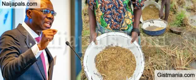 Lagos Sets To Boost Cultivation Of Rice Through Other States - Sanwo Olu Reveals