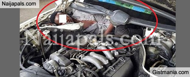 OMG! African Migrant Hides Inside Car Engine To Enter Spain (PHOTO)