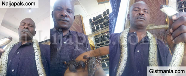 """Nigerian Man Poses With His """"Pets"""", A Python And Scorpions In Borno State (Photos)"""
