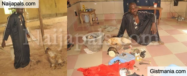 Pastor Who Buried Head Of Cow In His Church Arrested In Ondo