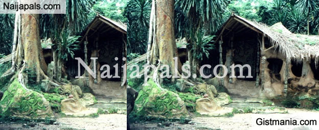 Pastor Becomes Unconscious, Gets Stuck While Trying To Destroy Idols In A Shrine In Ogun
