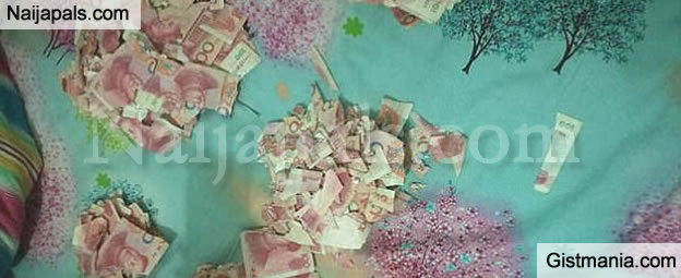 5 Years Old Boy Tears Up N2.7M Of His Fathers Money When left Home Alone