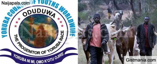 You Have 7 Days To Quit Our States - Yoruba Youths To All Fulani Herdsmen In South West